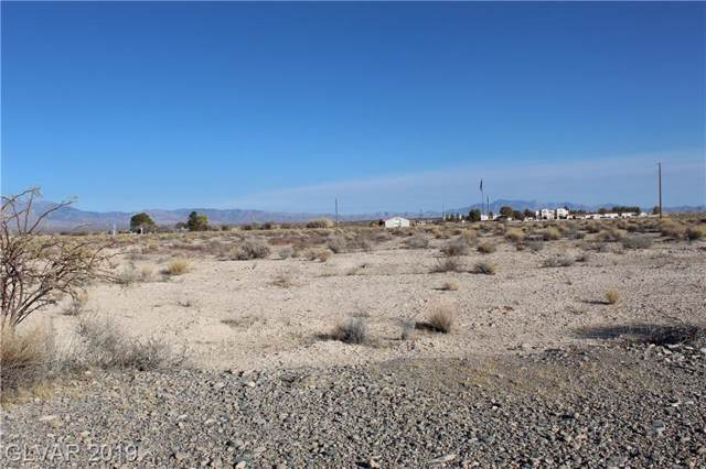 10091 S Robert Road, Pahrump, NV 89048 (MLS #2150819) :: The Lindstrom Group