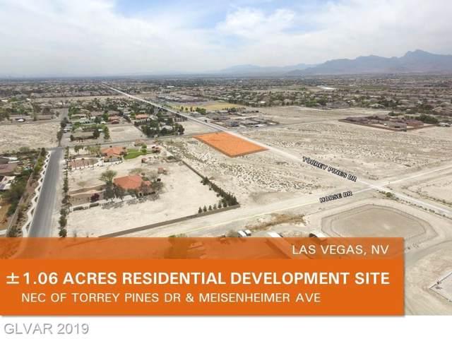 Meisenheimer Avenue, Las Vegas, NV 89131 (MLS #2152043) :: The Lindstrom Group
