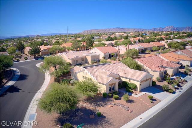 10705 Clarion, Las Vegas, NV 89134 (MLS #2153851) :: Signature Real Estate Group