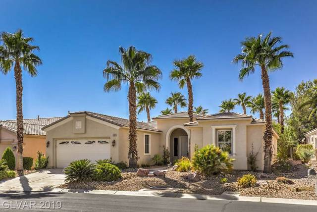 4555 Denaro, Las Vegas, NV 89135 (MLS #2158995) :: Vestuto Realty Group