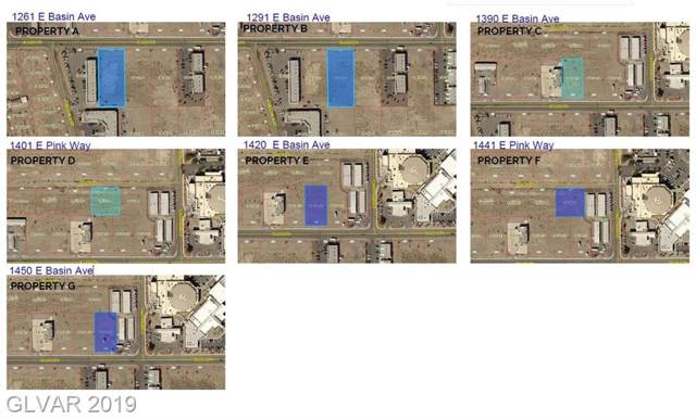 1420 E Basin, Pahrump, NV 89060 (MLS #2159050) :: Jeffrey Sabel