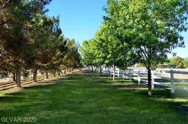 5A Farm, Las Vegas, NV 89131 (MLS #2165256) :: The Lindstrom Group