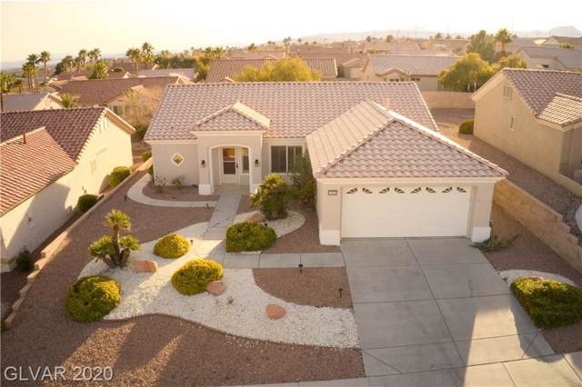 11021 Hawk Valley, Las Vegas, NV 89134 (MLS #2165562) :: Brantley Christianson Real Estate
