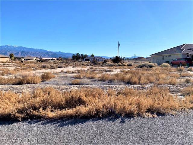 1871 S Old West Avenue, Pahrump, NV 89048 (MLS #2165759) :: The Lindstrom Group