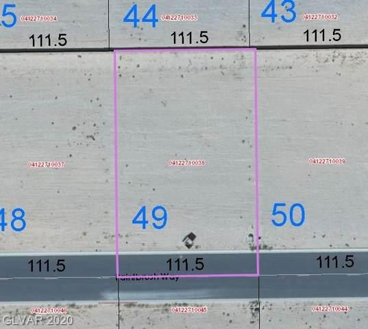 1564 Paintbrush Way, Logandale, NV 89021 (MLS #2166612) :: Jeffrey Sabel
