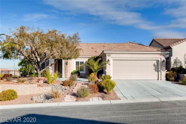 2160 Long Creek, Henderson, NV 89044 (MLS #2166971) :: Signature Real Estate Group