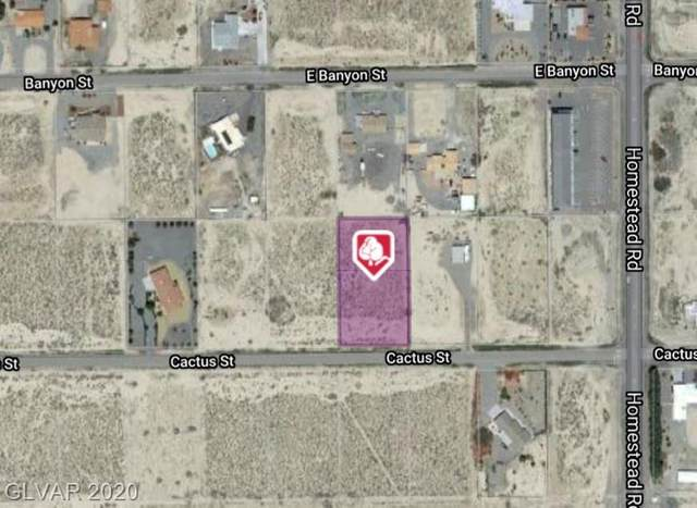 2890 E Cactus, Pahrump, NV 89048 (MLS #2170961) :: Trish Nash Team