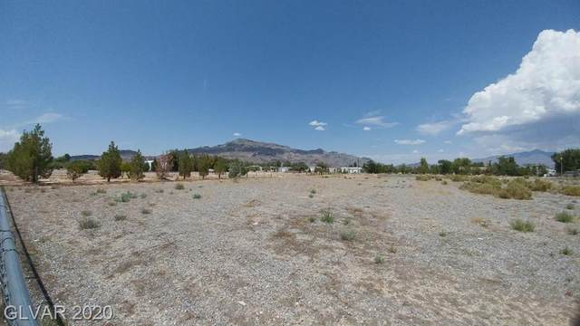 2220 W Tonya, Pahrump, NV 89060 (MLS #2171091) :: Jeffrey Sabel