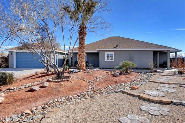 464 Tres Coyotes, Overton, NV 89040 (MLS #2171517) :: Trish Nash Team