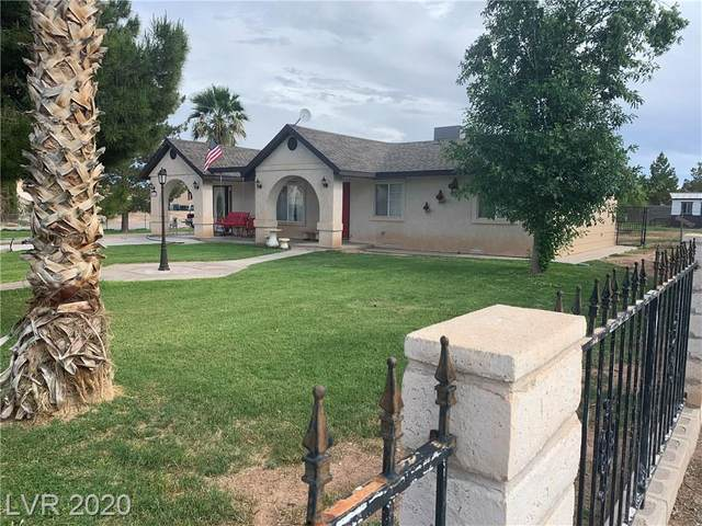 295 Robbin, Overton, NV 89040 (MLS #2174238) :: Trish Nash Team