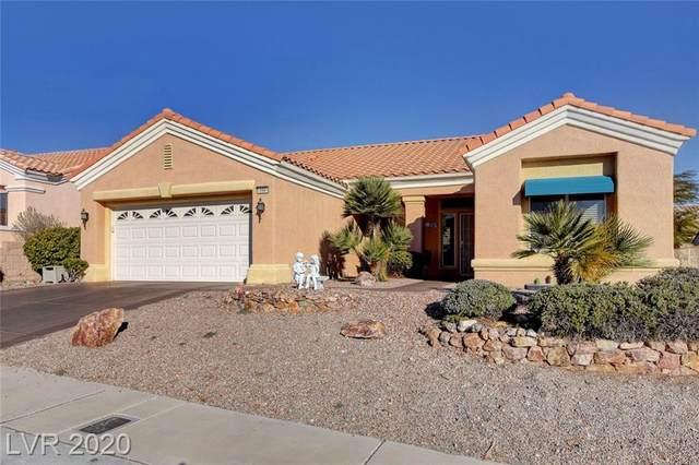 10904 Mission Lakes Avenue, Las Vegas, NV 89134 (MLS #2175482) :: Signature Real Estate Group