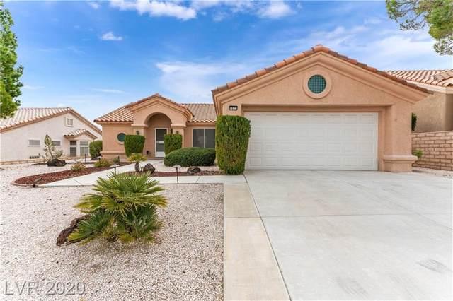 9921 Netherton Drive, Las Vegas, NV 89134 (MLS #2177887) :: Signature Real Estate Group