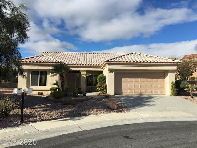 2209 Hot Oak Ridge, Las Vegas, NV 89134 (MLS #2183895) :: Signature Real Estate Group