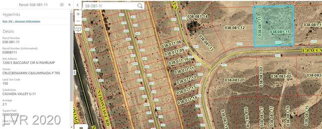 1200 Baccarat Circle, Pahrump, NV 89060 (MLS #2187791) :: The Lindstrom Group