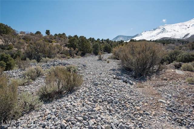 0 Oak Trail, Cold Creek, NV 89124 (MLS #2190620) :: Signature Real Estate Group