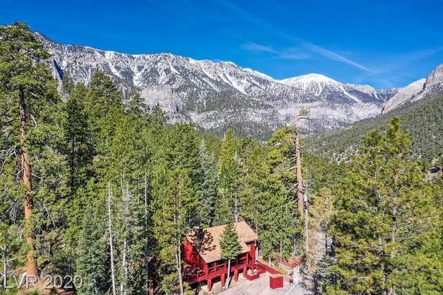 331 Ski Trail Road, Mount Charleston, NV 89124 (MLS #2192767) :: ERA Brokers Consolidated / Sherman Group