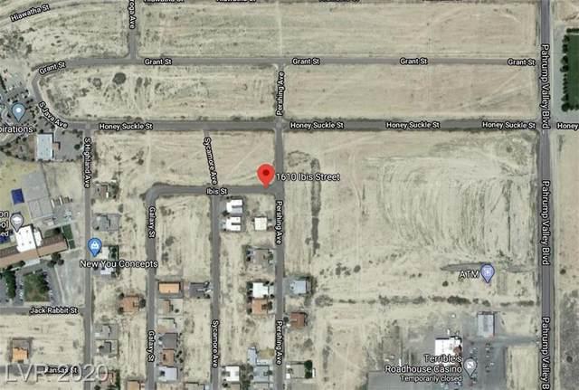 1090 Ibis, Pahrump, NV 89048 (MLS #2197244) :: Signature Real Estate Group