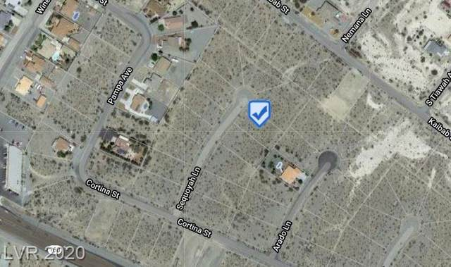 2241 Sequoya, Pahrump, NV 89048 (MLS #2197301) :: The Lindstrom Group