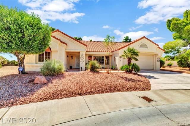 2504 Big Timber Drive, Las Vegas, NV 89134 (MLS #2197424) :: Signature Real Estate Group