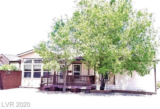 557 Jordyn Lane, Pioche, NV 89043 (MLS #2198794) :: Helen Riley Group | Simply Vegas