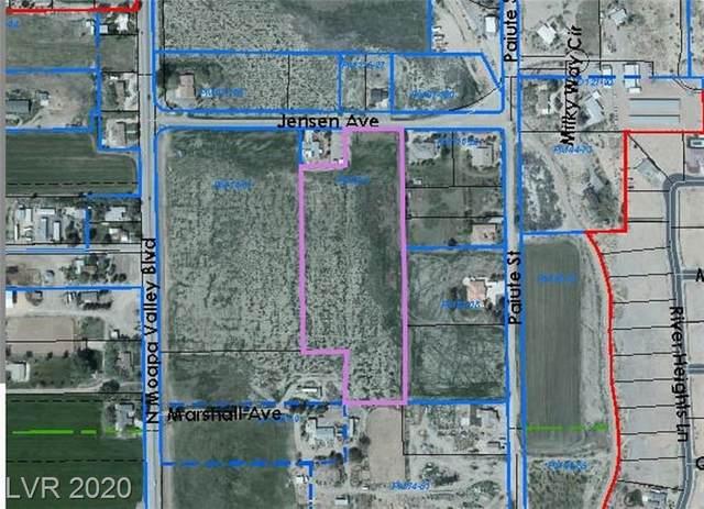 Jensen Avenue, Logandale, NV 89021 (MLS #2200116) :: Billy OKeefe | Berkshire Hathaway HomeServices