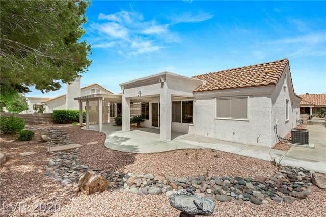 3017 Hawksdale, Las Vegas, NV 89134 (MLS #2202635) :: Hebert Group | Realty One Group
