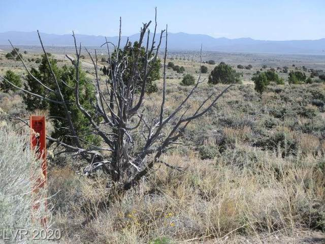 O'callaghan Ct, Pioche, NV 89043 (MLS #2202842) :: Vestuto Realty Group