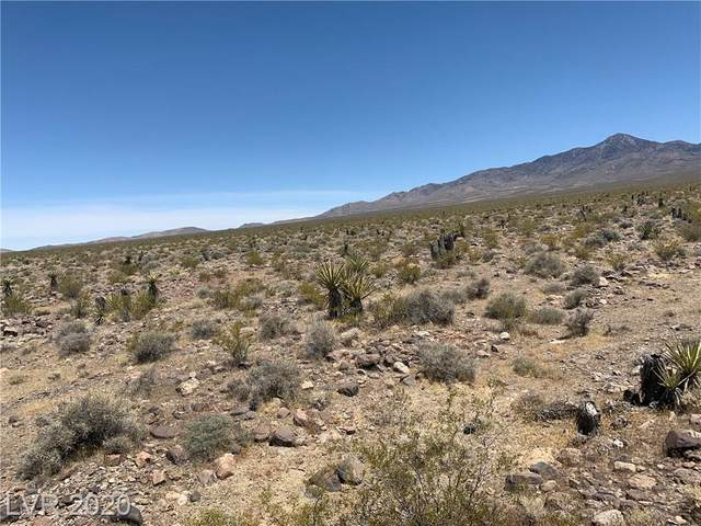 1090 Alexandrite, Pahrump, NV 89060 (MLS #2204529) :: Jeffrey Sabel
