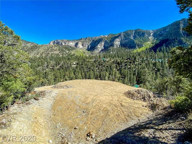 Kyle Canyon Road, Mount Charleston, NV 89124 (MLS #2206698) :: Signature Real Estate Group