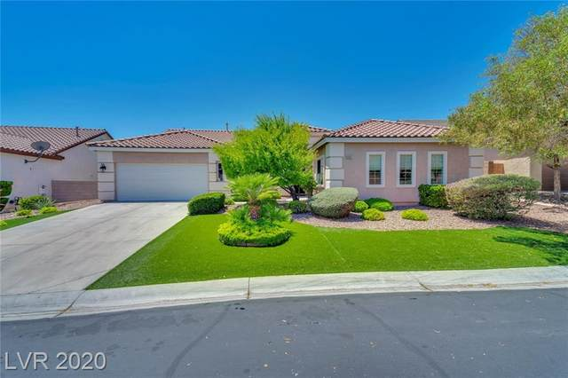 9901 Liberty View Road, Las Vegas, NV 89148 (MLS #2206969) :: The Lindstrom Group