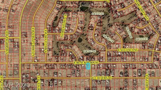 1491 Blackhorn Street, Pahrump, NV 89048 (MLS #2207973) :: Signature Real Estate Group