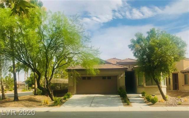 3729 Citrus Heights Avenue, North Las Vegas, NV 89081 (MLS #2208092) :: ERA Brokers Consolidated / Sherman Group