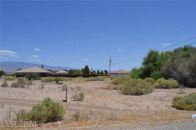 2861 Blagg Road, Pahrump, NV 89048 (MLS #2208102) :: Lindstrom Radcliffe Group