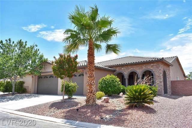 4860 S Pacini, Pahrump, NV 89061 (MLS #2208706) :: The Lindstrom Group