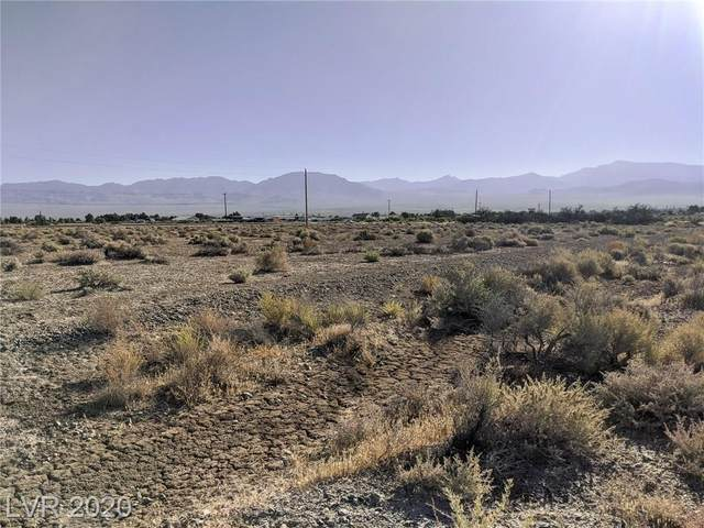 760 Aspen Street, Pahrump, NV 89048 (MLS #2208707) :: Signature Real Estate Group