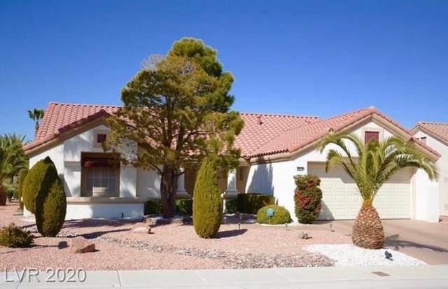 8824 Stan Crest Drive, Las Vegas, NV 89134 (MLS #2208748) :: The Shear Team