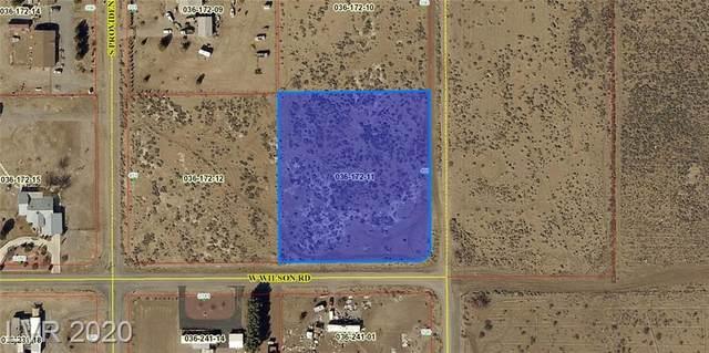 450 Happy Lane, Pahrump, NV 89048 (MLS #2209315) :: Signature Real Estate Group