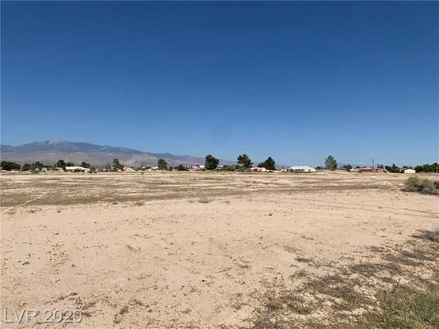 2001 S Waterhole Canyon Avenue, Pahrump, NV 89048 (MLS #2209328) :: Signature Real Estate Group