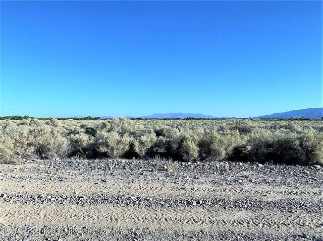 3531 E Gamebird Road, Pahrump, NV 89048 (MLS #2209546) :: Signature Real Estate Group