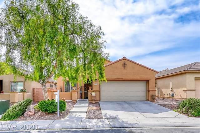 6741 Scavenger Hunt Street, North Las Vegas, NV 89084 (MLS #2209788) :: Jeffrey Sabel