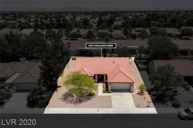 3020 Cavalcade Street, Las Vegas, NV 89134 (MLS #2209904) :: The Lindstrom Group
