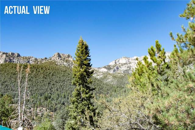 3952 Ski Trail Circle, Mount Charleston, NV 89124 (MLS #2212247) :: Signature Real Estate Group