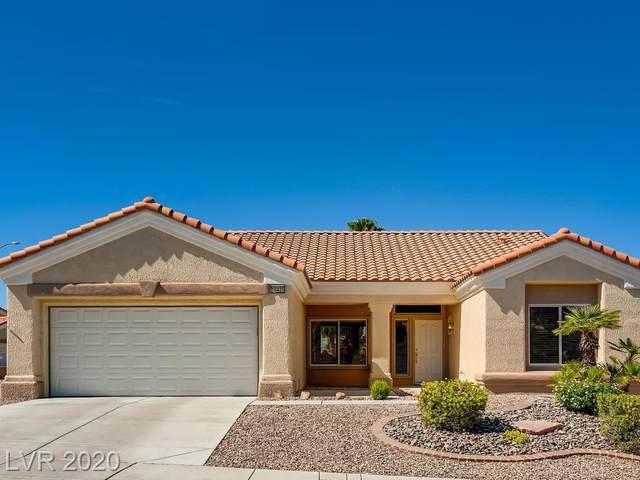 10420 Sawmill Avenue, Las Vegas, NV 89134 (MLS #2213519) :: Billy OKeefe | Berkshire Hathaway HomeServices