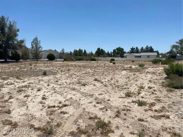 5621 Saddletree Road, Pahrump, NV 89061 (MLS #2216359) :: Performance Realty