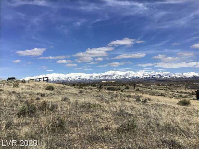 10446 Gadwall, Other, NV 89801 (MLS #2217260) :: Performance Realty