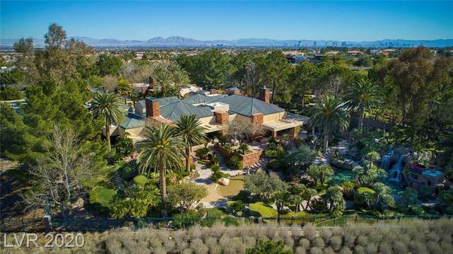 1701 Enclave Court, Las Vegas, NV 89134 (MLS #2217835) :: The Lindstrom Group