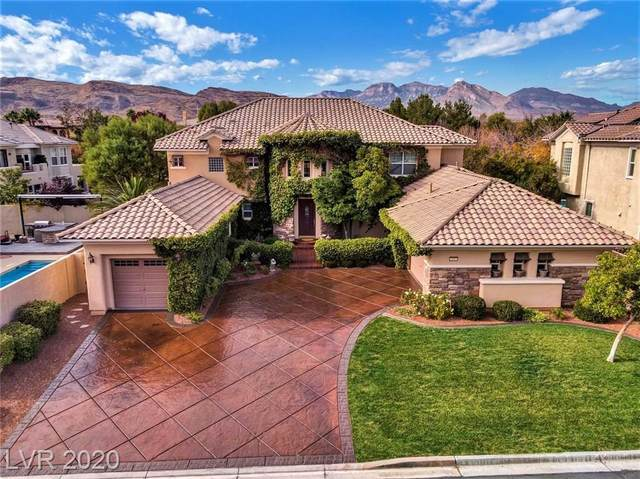 3041 Hammerwood Drive, Las Vegas, NV 89135 (MLS #2217904) :: Signature Real Estate Group