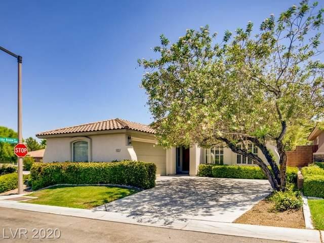 11125 Golden Aster Avenue, Las Vegas, NV 89135 (MLS #2218082) :: The Perna Group