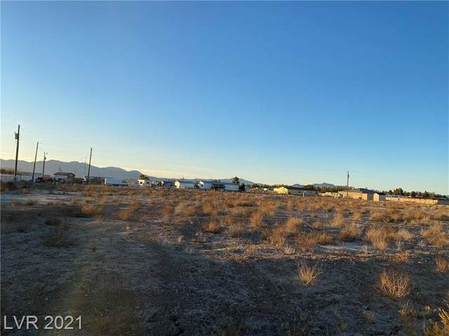 3690 S Stirrup Avenue, Pahrump, NV 89048 (MLS #2218373) :: Hebert Group | Realty One Group