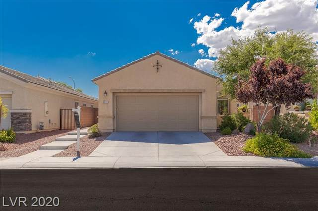 6633 Scavenger Hunt Street, North Las Vegas, NV 89084 (MLS #2218581) :: Hebert Group | Realty One Group